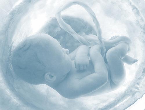 foto-bebe-barriga
